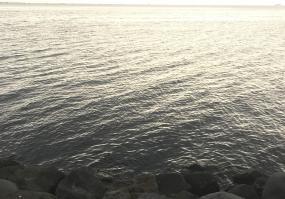 포항 바다 낚시하러 왔어요^^
